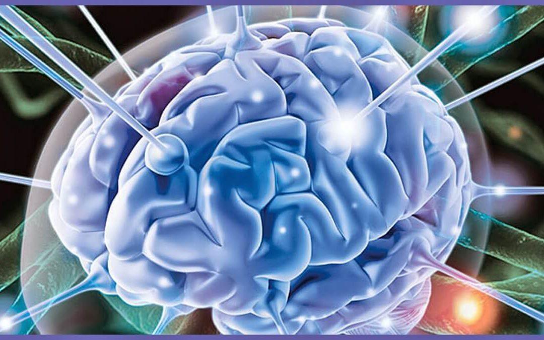 Памет, съхранение на спомени и лечение на Алцхаймер