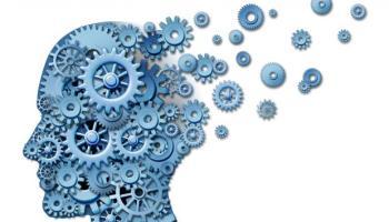 Как работи паметта на човека?